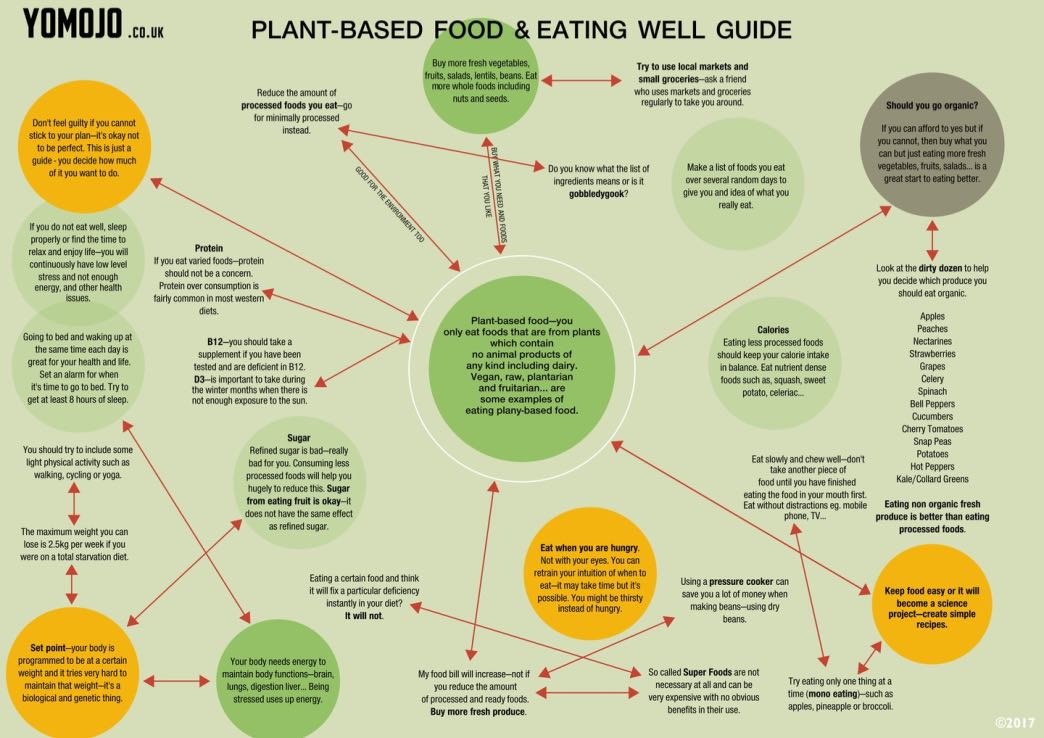 Plant-based food guide